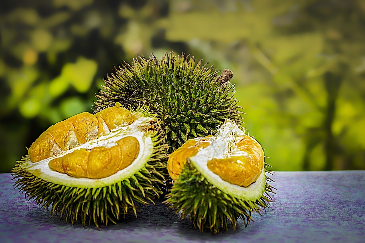 Buy Durian in Sri Lanka