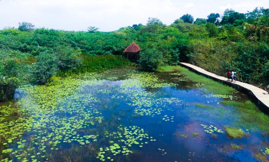 Wetland Park in Colombo